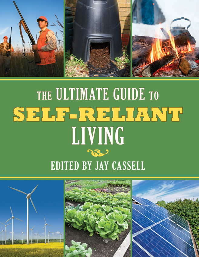 Books The Ultimate Guide to Self-