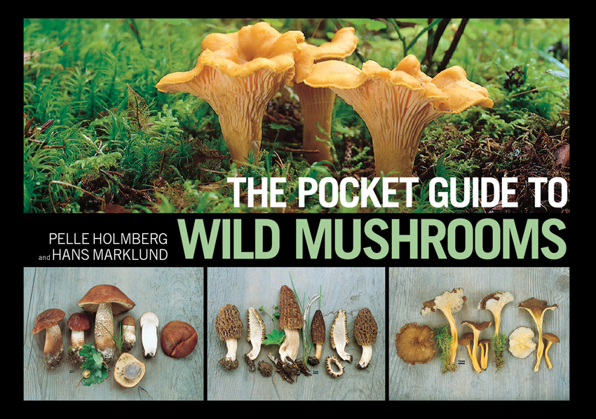 Books Pocket Guide To Wild Mushrooms